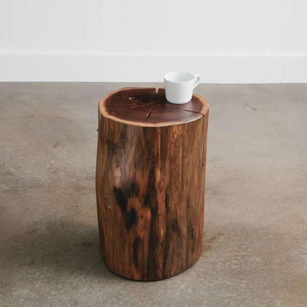 Real tree stump side table