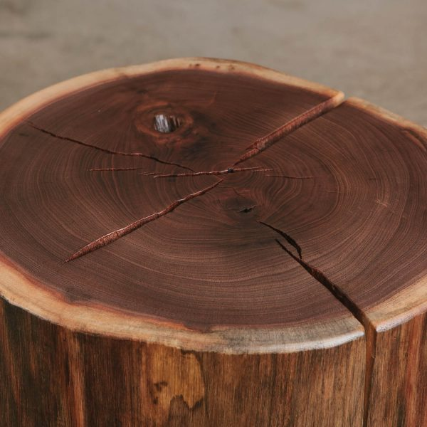 Walnut stump side table with natural tree characteristics
