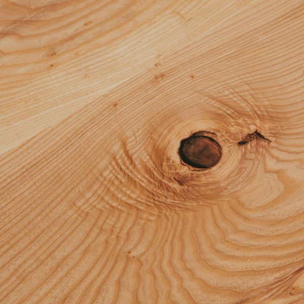 Ash wood grain Elko Hardwoods