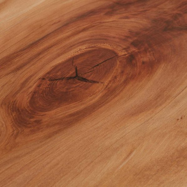 Sycamore wood grain detail Elko Hardwoods