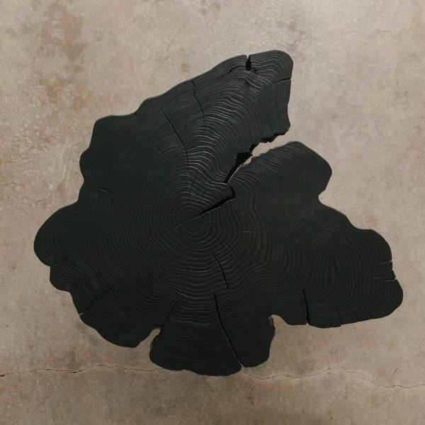 Luxury live edge asymmetrical blackened coffee table slab